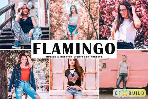 CM - Flamingo Pro Lightroom Presets 4080521