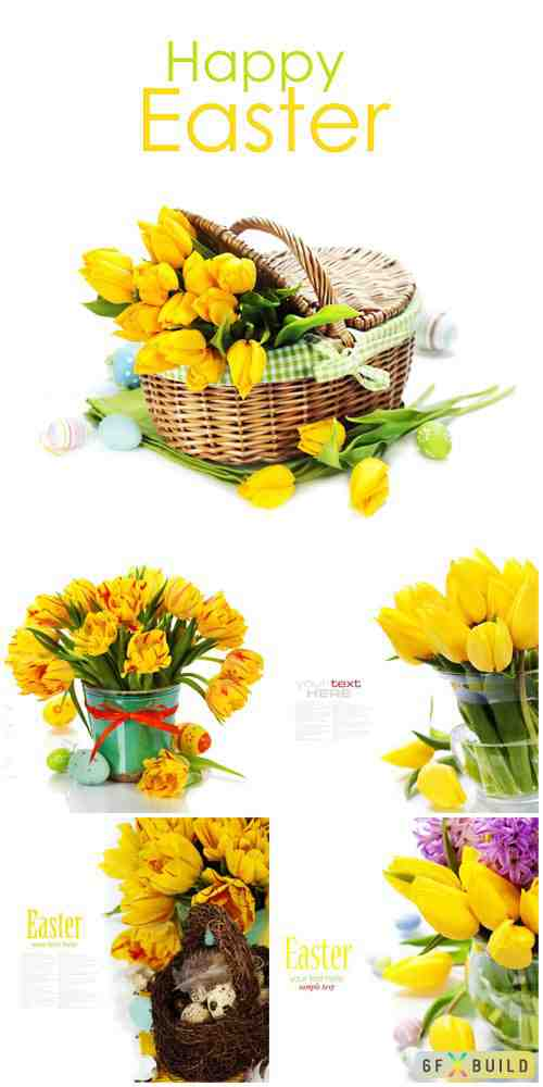 Yellow tulips, easter composition stock photo
