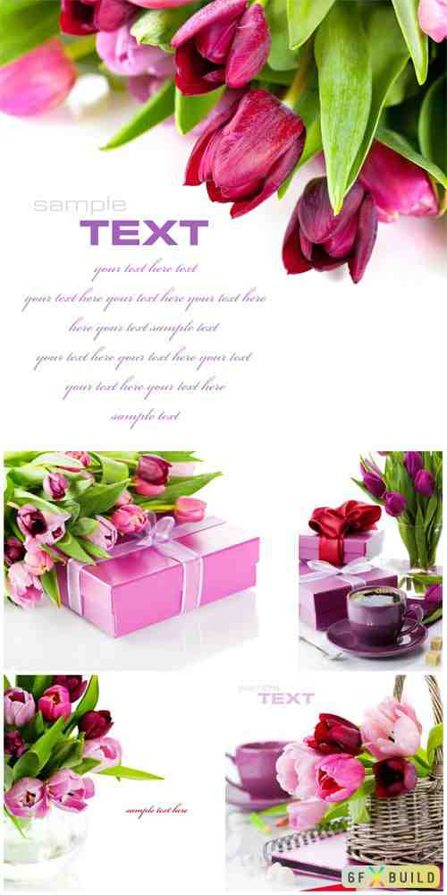 Tulips and gift boxes stock photo