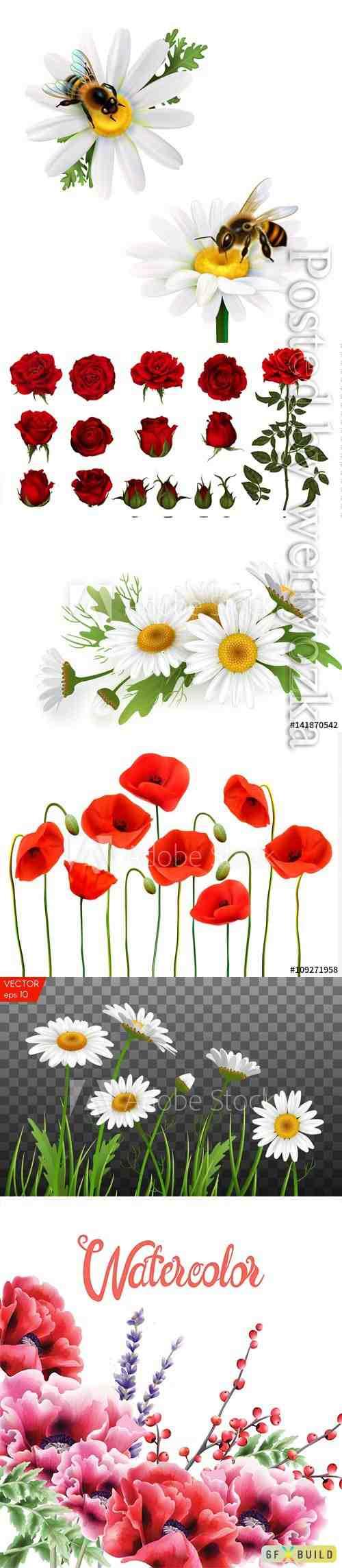 Beautiful flowers in vector
