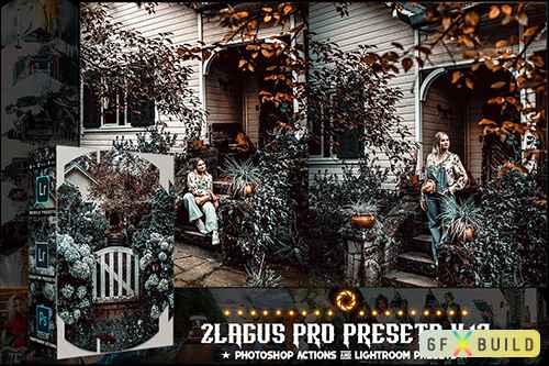 PRO Presets - V 17 - Photoshop & Lightroom