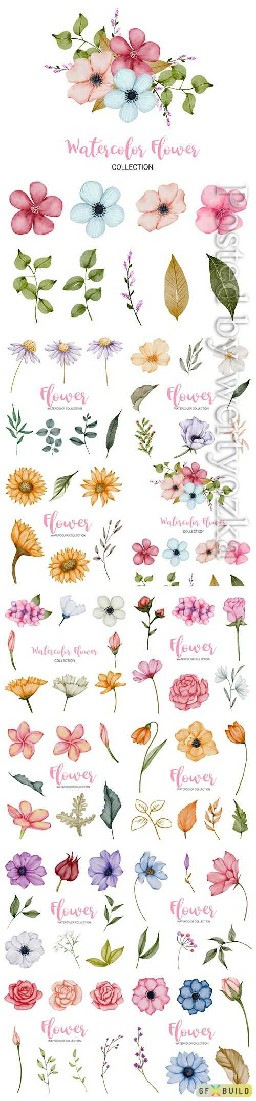 Set of beautiful vector flowers in watercolor style