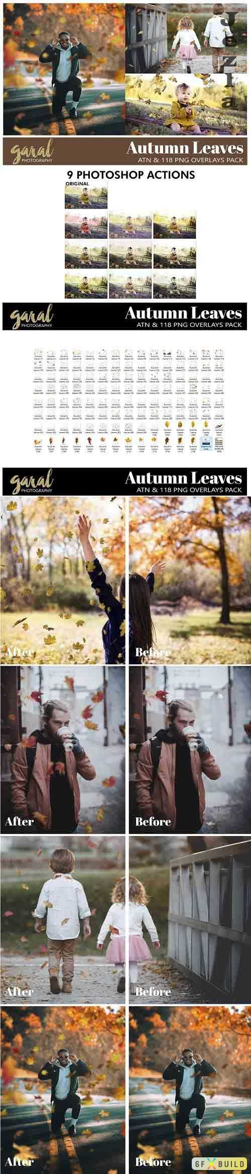 118 Falling Leaves Overlays And Ps Actions - 664526