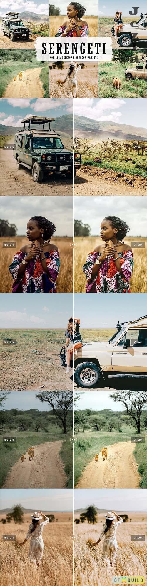 Serengeti Pro Lightroom Presets - 6525715